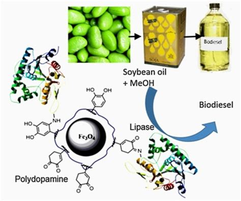 New research paper in biotechnology